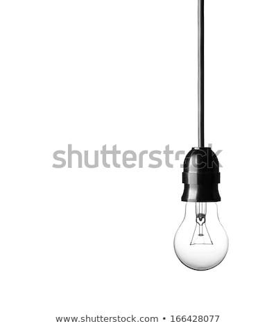 Fluorescencyjny żarówka biały tle przestrzeni energii Zdjęcia stock © ozaiachin