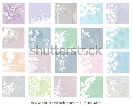 Floral invitation card for life events, vector illustration  Stock photo © carodi