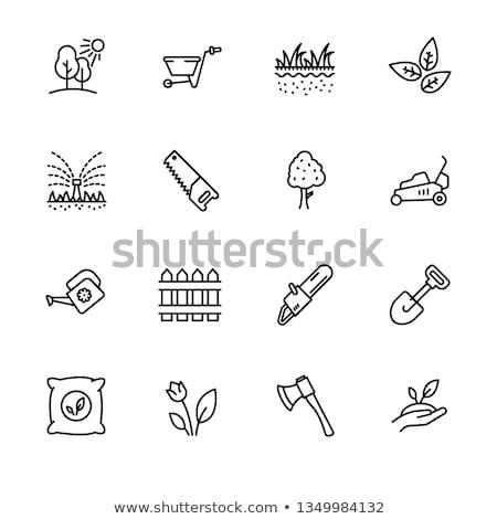 Vector icon ax Stock photo © zzve