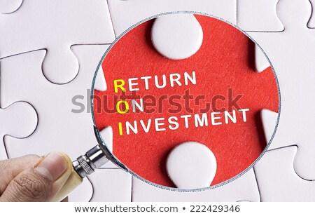 ROI on Blue Puzzle Pieces. Business Concept. Stock photo © tashatuvango