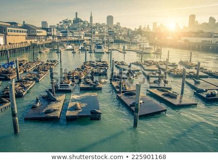 San Francisco Pier 39 Ship Stock photo © weltreisendertj