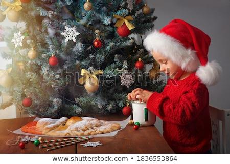 少年 · クリスマス · クッキー · 肖像 - ストックフォト © zhekos