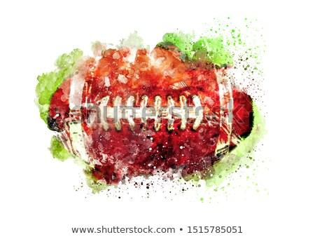 grunge · amerikai · futball · fű · sport · festék - stock fotó © burakowski