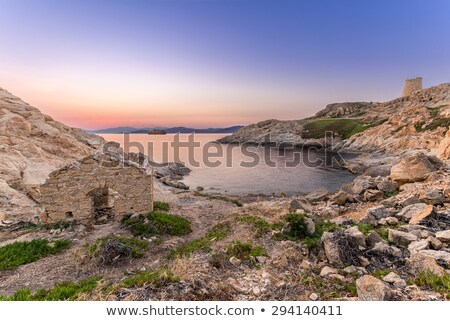 Purple dawn, Ile Rousse, Corsica Stock photo © Joningall