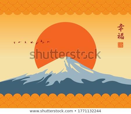 vuelo · aves · nieve · cubierto · montana · fuji - foto stock © shihina