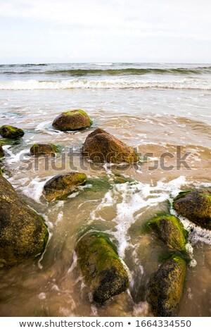 風の強い ビーチ 海岸 ストックフォト © Mps197
