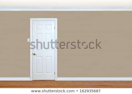 Brown Door With Beige Trim Stock photo © rhamm