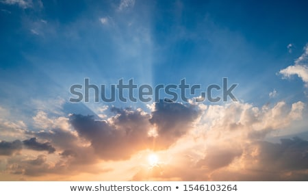 sunrise · deserto · tar · India · cielo · sole - foto d'archivio © oleksandro