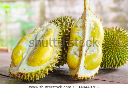 delicious fresh ripe thai durian stock photo © nalinratphi