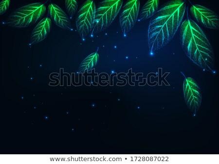 Verde eco marco resumen diseno fondo Foto stock © blaskorizov
