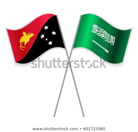 Саудовская Аравия Папуа-Новая Гвинея флагами головоломки изолированный белый Сток-фото © Istanbul2009