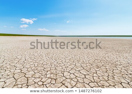 Sivatag repedt Föld stilizált végtelenített égbolt Stock fotó © tracer