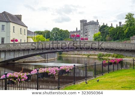 Ver castelo Irlanda belo árvores Foto stock © morrbyte