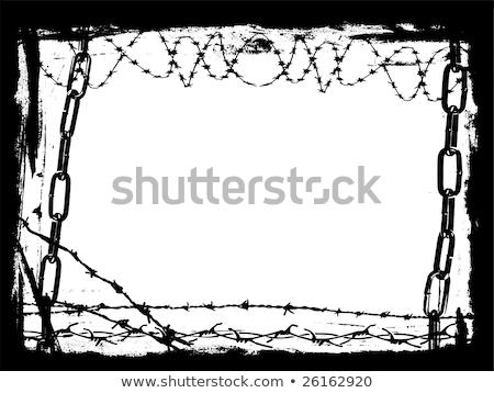 filo · spinato · elementi · recinzione · senza · soluzione · di · continuità · modulo · separato - foto d'archivio © pokerman