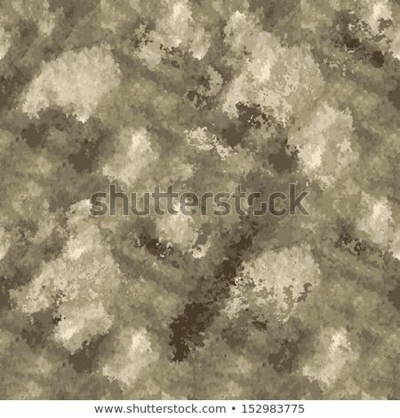 álca katonaság csata ruha egyenruha katonai egyenruha Stock fotó © tab62
