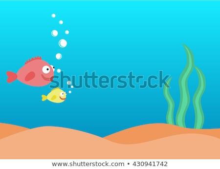 Stock fotó: Vízalatti · jelenet · hal · úszik · illusztráció · természet