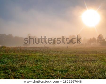 Napfelkelte köd mező ősz felhők fű Stock fotó © ssuaphoto