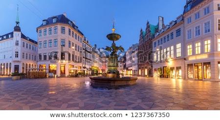 Fonte cegonha Copenhague Dinamarca praça cidade Foto stock © vladacanon