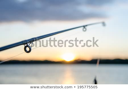 fishing on a lake before sunset stock photo © alex_grichenko