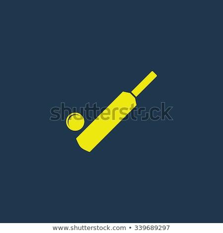 Krikett denevér sötét általános fából készült izolált Stock fotó © albund