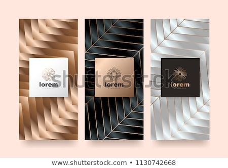 Arany prémium kártya szett vektor terv Stock fotó © SArts