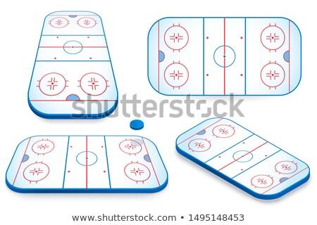 Icon playground ice hockey in isometric, vector illustration. Stock photo © kup1984