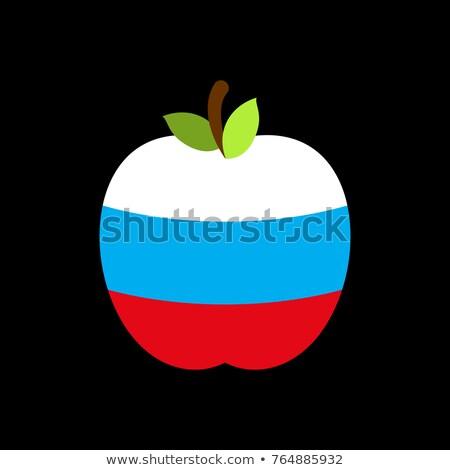 Apple Russia flag. Russian National Fruit. Vector illustration Stock photo © popaukropa