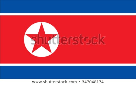 Vector North Korean flag background Stock photo © myfh88