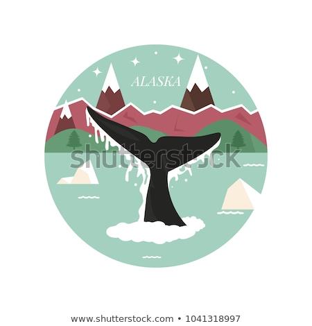 Cartoon Аляска иллюстрация улыбаясь лице графических Сток-фото © cthoman