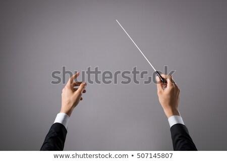 eller · yönetmen · müzik · öğretmen · siluet · müdür - stok fotoğraf © andreypopov