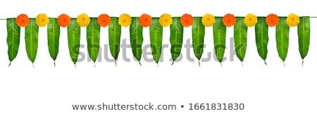 Feliz indiano flor grinalda manga folhas Foto stock © orensila