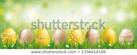 Golden Easter Eggs Bokeh Green Grass Ostern Header Stock photo © limbi007