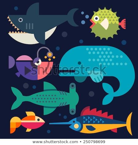 aquarium with fish and seaweed underwater species stock photo © robuart
