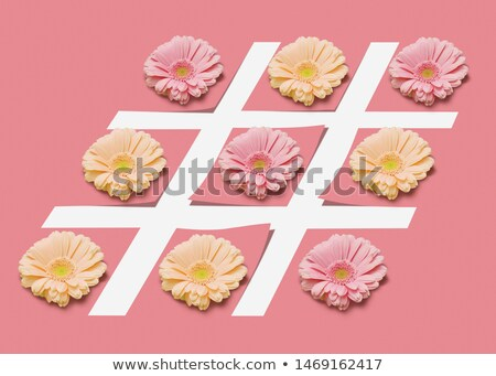Hash tag sign with flowers on a pink pastel background. Stock photo © artjazz