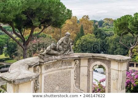 Standbeeld tuin villa Rome heuvel best Stockfoto © borisb17