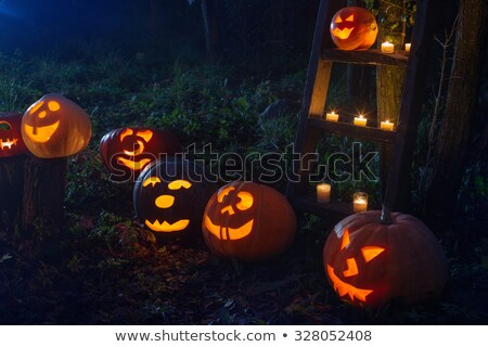 Halloween lanterna zucca fuori autunno caduta Foto d'archivio © solarseven