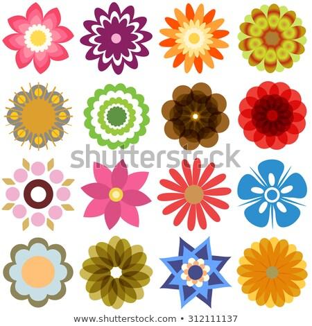 Kleurrijk abstract 22 iconen Stockfoto © cidepix