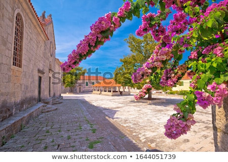 Blato on Korcula island historic stone square town lodge and chu Stock photo © xbrchx