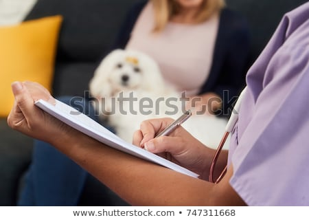 女性 医師 話し 犬 所有者 笑みを浮かべて ストックフォト © Kzenon