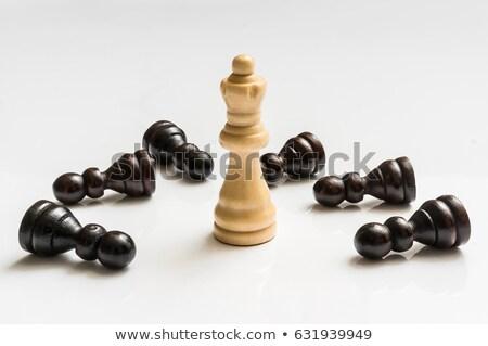 Pedone bianco giù scacchiera nero uno Foto d'archivio © Lizard