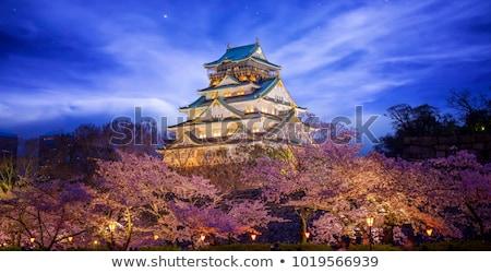 Oszaka · éjszakai · város · Japán · városkép · tájékozódási · pont · üzlet - stock fotó © photohome