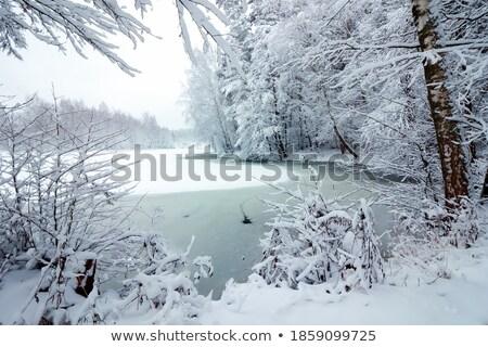 vecchio · sala · lake · district - foto d'archivio © vichie81