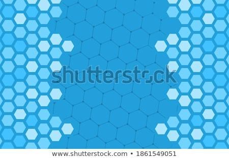free in color hexagons Stock photo © marinini