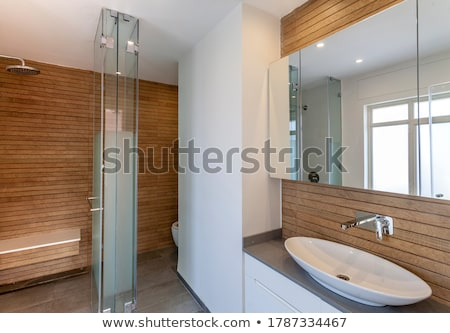 moderno · banheiro · casa · interior · contemporâneo · projeto - foto stock © luckyraccoon