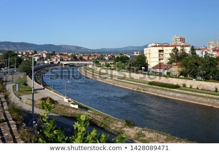 Río Serbia ciudad árboles urbanas arquitectura Foto stock © dinozzaver