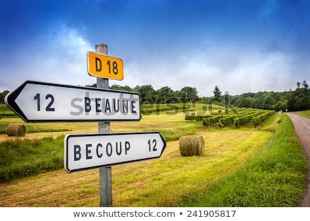 Meursault sign Stock photo © Hofmeester