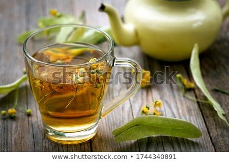 linden flower stock photo © badmanproduction