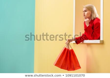 decoratief · blond · meisje · zak · kopen · aantrekkelijk - stockfoto © justinb