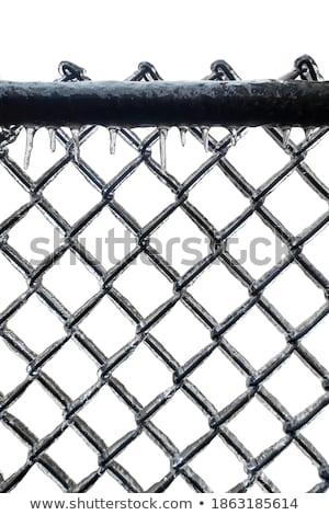 keten · link · hek · prikkeldraad · zwart · wit · achtergrond - stockfoto © gabes1976