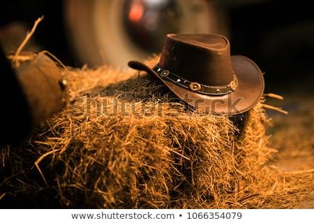 vintage · chapéu · de · cowboy · branco · vaca · cabeça · roupa - foto stock © stoonn